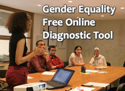 Gender Equality in the Workplace – Free Online Assessment Tool Available